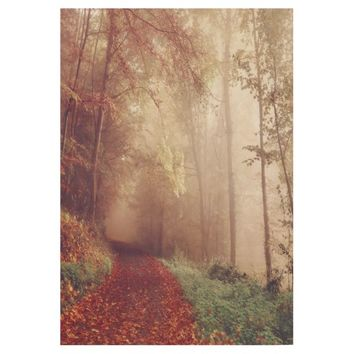 Pretty Fall Leaves Trail Photography Wood Poster