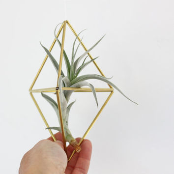 Brass Himmeli Ornament no. 3 / Modern Hanging Mobile / Geometric Air Plant Holder / Minimalist Home Decor