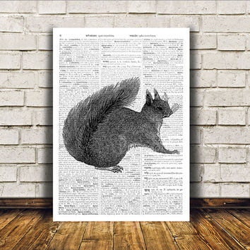 Dictionary print Squirrel poster Wall decor Animal art RTA410