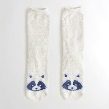 Girls Graphic Socks | Girls New Arrivals | HollisterCo.com