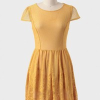 Honey Love Embroidered Dress