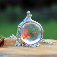 Real loose saffron, Terrarium necklace, botanical jewelry, Bohemian jewelry, Statement, glass necklace,  woodland, Faith and Change