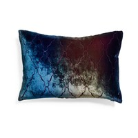 Kevin O'Brien Peacock Arches Velvet Pillow