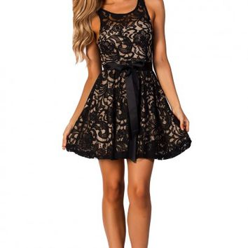 Jenny Black Fit and Flare Sleeveless Lace Skater Dress