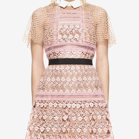 Pink Contrast Collar Mesh Cape Sheer Trim Lace Mini Dress