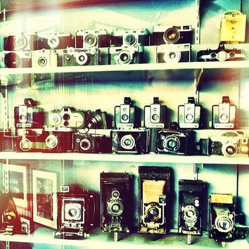 Vintage Cameras in Shop Window, home decor, wall art, 8x8 fine art photo print
