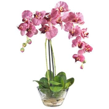 Phalaenopsis w-Glass Vase Silk Flower Arrangement