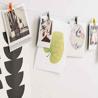 Mini Clothespin Photo Clips String Set