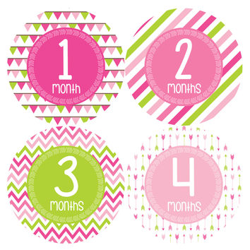 Baby Girl Monthly Baby Stickers Style #377