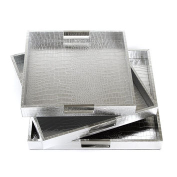 Modern Silver Nested Gallery Tray Set