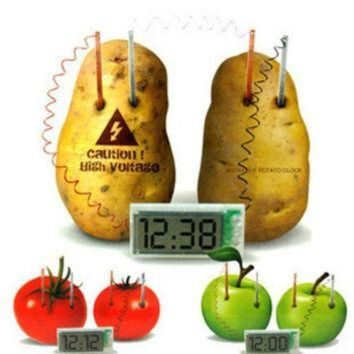 CREYUG7 New Energy toys Potato Clock Green Science Electro chemical Cells Electrical energy Co