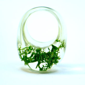 Resin ring. Green moss preserved, Resin jewelry. Modern jewelry botanical OOAK, contemporary , clear ring