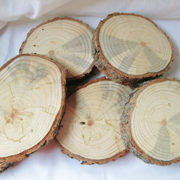 Rustic Tree Slices, Wood Discs, Wood Rounds, Tree Bark, Blank Wood Rounds