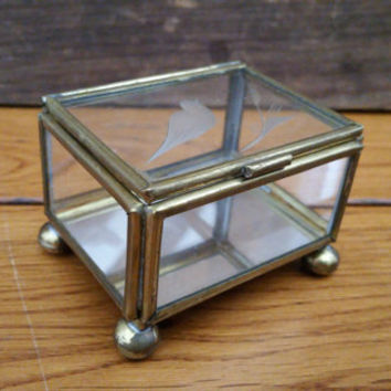 Vintage Small Brass Vitrine Glass Rectangle Display Case Jewelry Box With Etched Bird