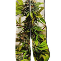 SATIVA SOCKS