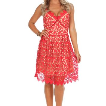 Red Lace Scallop Fit & Flare