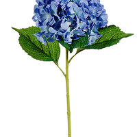 """Hydrangea Stem in Blue with Soft Green Highlights - 31.5"""" Tall"""
