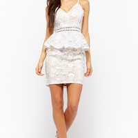 Sheer Floral Embroidered Flounce Mini Dress