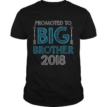Promoted To Big Brother Shirt Premium Fitted Guys Tee