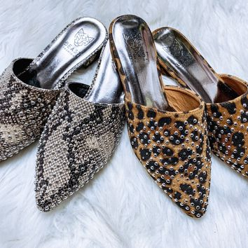 Take A Walk On The Wild Side Mules