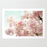 cherry blossoms Art Print by sylviacookphotography