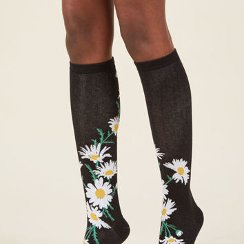 One of Those Daisies Knee Socks
