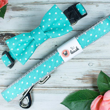 Teal Polka Dot Dog Collar with Removable Bow Tie or Flower