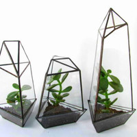 Terrarium - Vivarium - Geometric Terrarium - Removable Tray - Indoor Planter