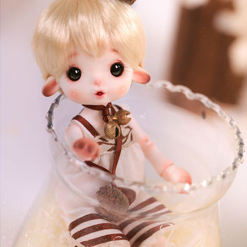 Pine Cone - Momo, Charm Doll 15cm Limited Doll - BJD Dolls, Accessories - Alice's Collections