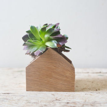 Tiny Wooden Planter Box - Wooden House Shaped Succulents Box Container Succulent Planter Pot Wooden Planter Air Natural Wood Centerpiece