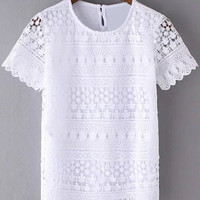 Crochet Short Sleeve Lace Splicing Blouse