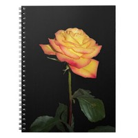 Yellow Rose Spiral Photo Notebook