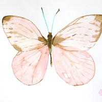 Pastel Butterfly - 9x12 Original Watercolor Painting - nature, butterfly, pink