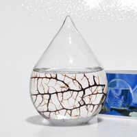 EcoSphere Closed Aquatic Ecosystem, Small Water Drop