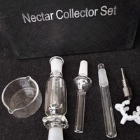 MINI Micro 10mm Nectar Collector Kit with GR2 Titanium & glass Nail honey straw water pipes