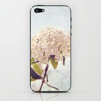 Summer Love iPhone & iPod Skin by Dena Brender Photography
