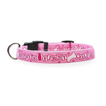 Puppy's First Dog Collar by Yellow Dog - Pink