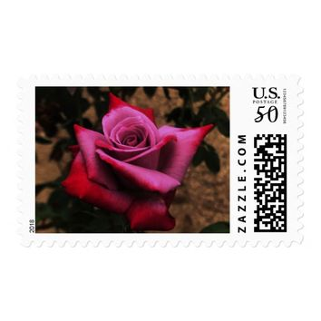 Antique Rose Postage