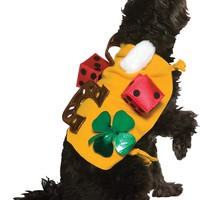 Lucky Dog Costume for Halloween 2017