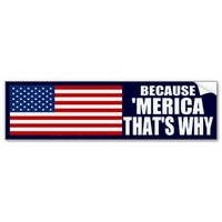 BECAUSE 'MERICA THAT'S WHY Bumper Sticker from Zazzle.com