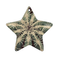 "Angie Turner ""Cactus"" Plant Ceramic Star Ornament"