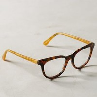 Philosophe Reading Glasses by Anthropologie in Brown Motif Size: