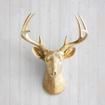 The Virginia Large Gold Faux Taxidermy Resin Deer Head Wall Mount | Gold Stag w/ Colored Antlers