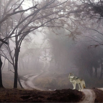 Wolf Deep In The Forest