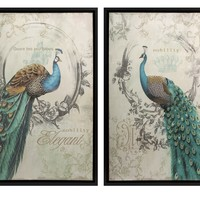 IMAX Panache Peacock 2 Piece Framed Painting Print Set