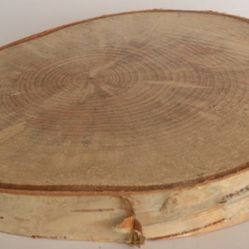 "Birch Log Wood Slices 4 1/2"" to 6"" x 1"" Thick Set of 5"