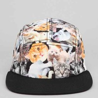 Kitty Collage 5-Panel Hat - Multi One
