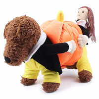 Pumpkin Carrying Dog Costume