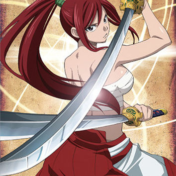 Erza from Fairy Tail Wall Scroll