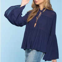 Blue Bell Long Sleeve Pleated Sheer Blouse